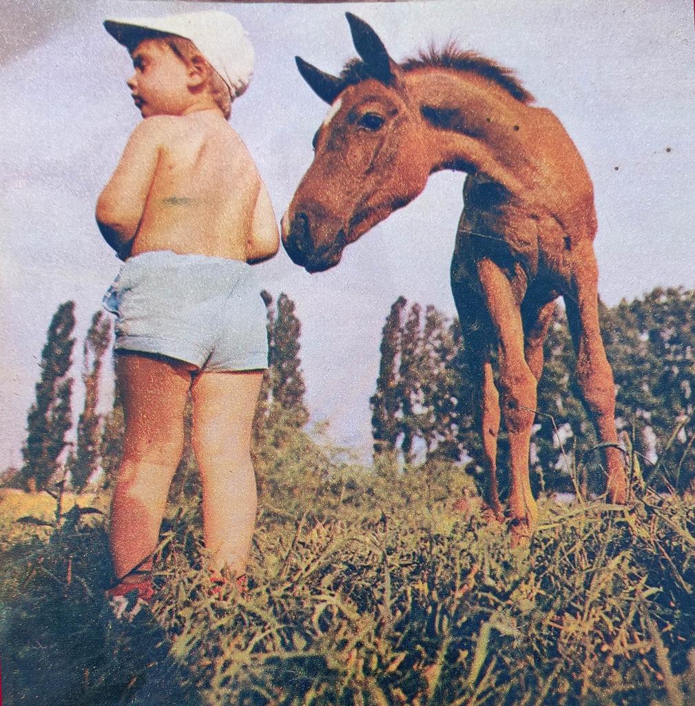 фотографии с животными  ссср